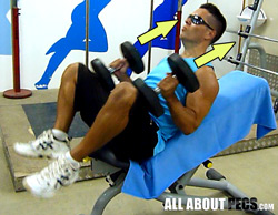 incline-press-push-dumbbells-with-thighs